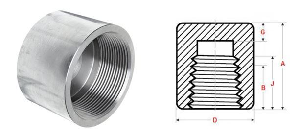 Forged Fittings Cap manufacturer india