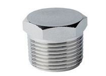 Stainless Steel Blanking Plug Fitting Manufacturer in India